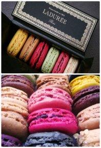 the famous ladurée macaroons