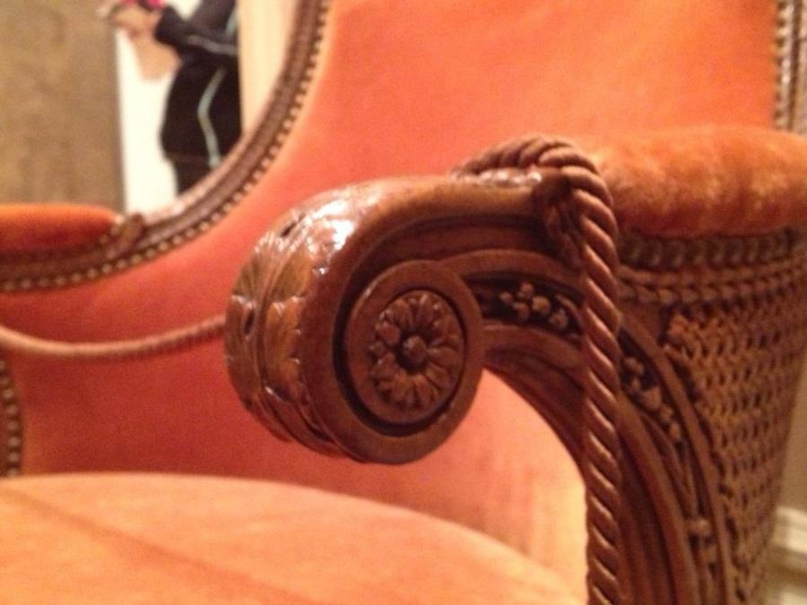 marie antoinette's chaise de toilette from Petit Trianon, detail